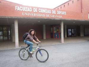 Palma Chil